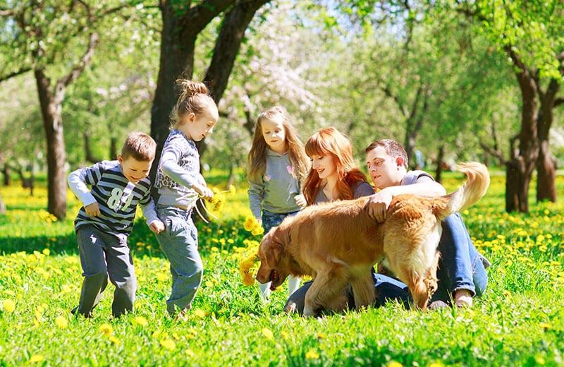 Vacanze in famiglia valli di tures e aurina vivoaltoadige for Vacanze in famiglia