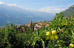 Partschins in der Ferienregion Meraner Land